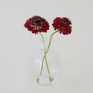 リューズガラス フラワーベース